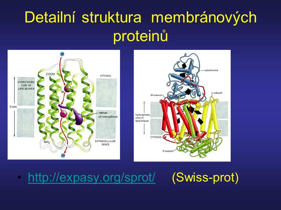 Detailní struktura membránových proteinů http://expasy.org/sprot/ (Swiss-prot)http://expasy.org/sprot/