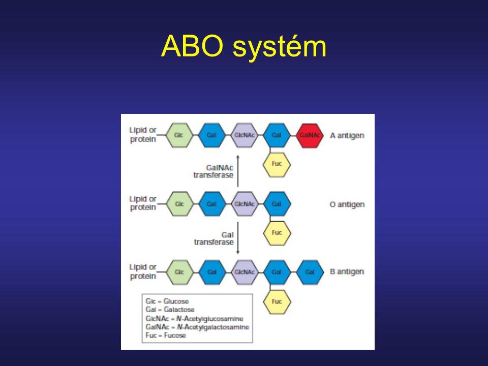 ABO systém