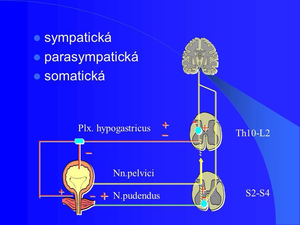 Léčiva pro terapii stresové inkontinence látky inhibující reuptake serotoninu a noradrenalinu (SNRI) dominantním místem působení je Onufovo jádro (S2–S4), které obsahuje motoneurony pudendálních nervůmotoneurony