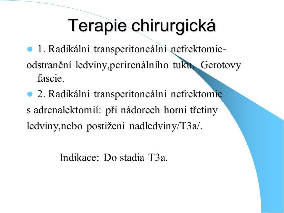 Terapie chirurgická 1.
