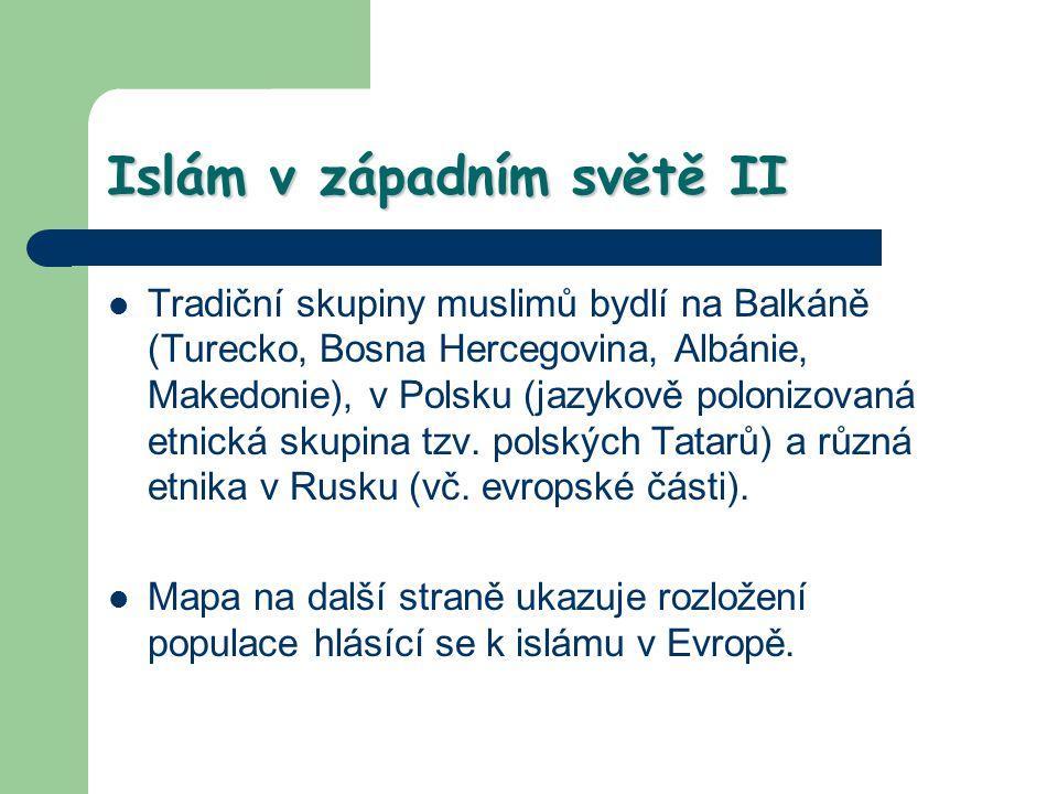 Islám v západním světě II Tradiční skupiny muslimů bydlí na Balkáně (Turecko, Bosna Hercegovina, Albánie, Makedonie), v Polsku (jazykově polonizovaná