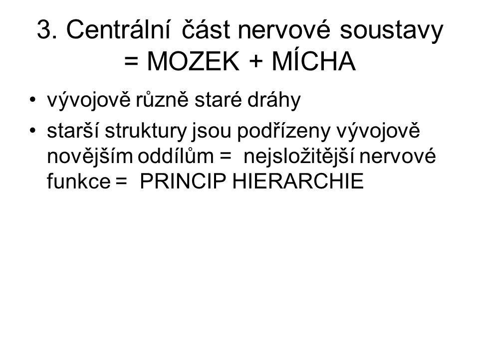 3. Centrální část nervové soustavy = MOZEK + MÍCHA vývojově různě staré dráhy starší struktury jsou podřízeny vývojově novějším oddílům = nejsložitějš