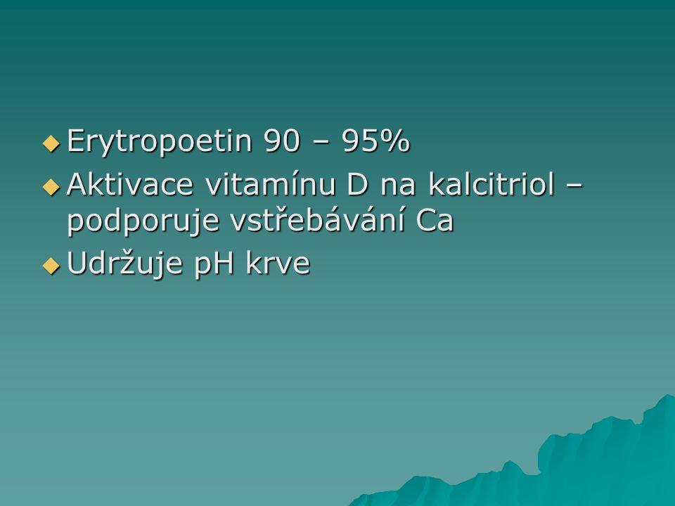  Erytropoetin 90 – 95%  Aktivace vitamínu D na kalcitriol – podporuje vstřebávání Ca  Udržuje pH krve