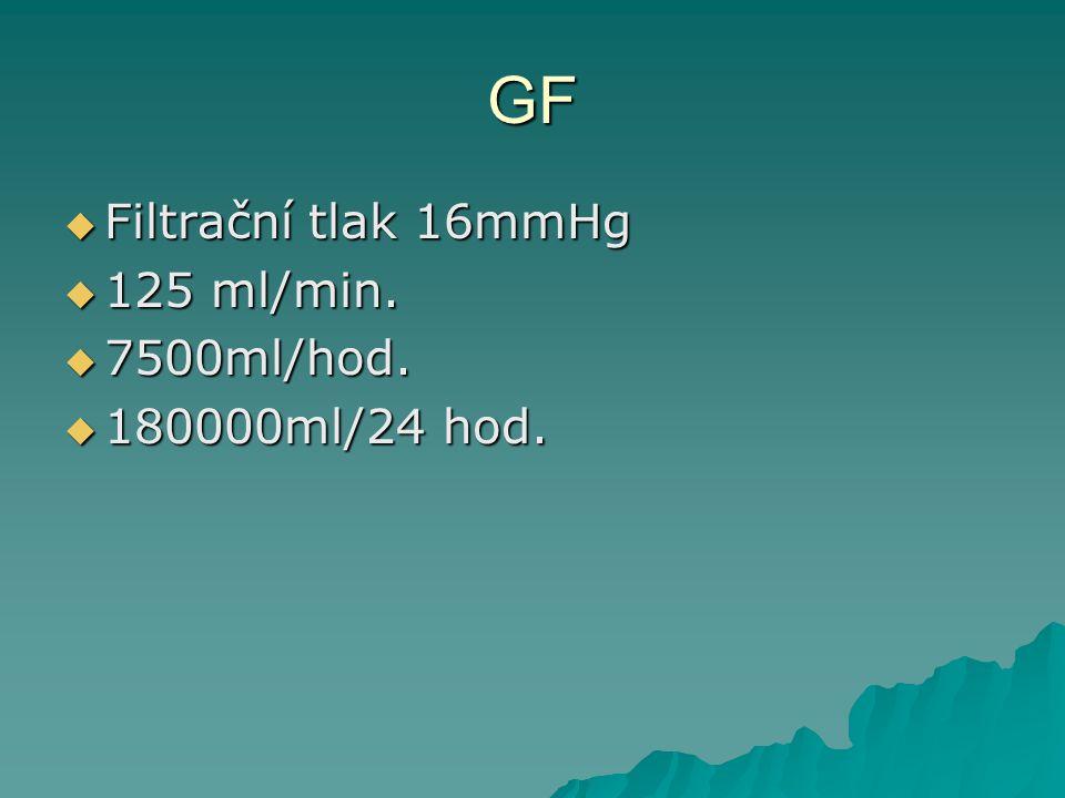 GF  Filtrační tlak 16mmHg  125 ml/min.  7500ml/hod.  180000ml/24 hod.