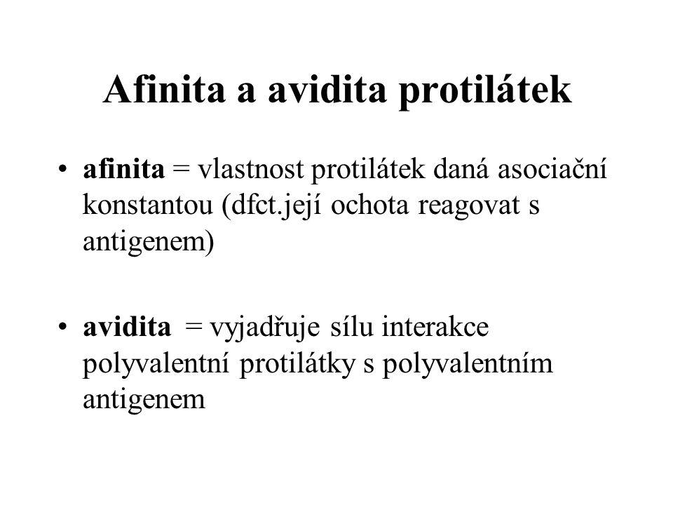 Afinita a avidita protilátek afinita = vlastnost protilátek daná asociační konstantou (dfct.její ochota reagovat s antigenem) avidita = vyjadřuje sílu