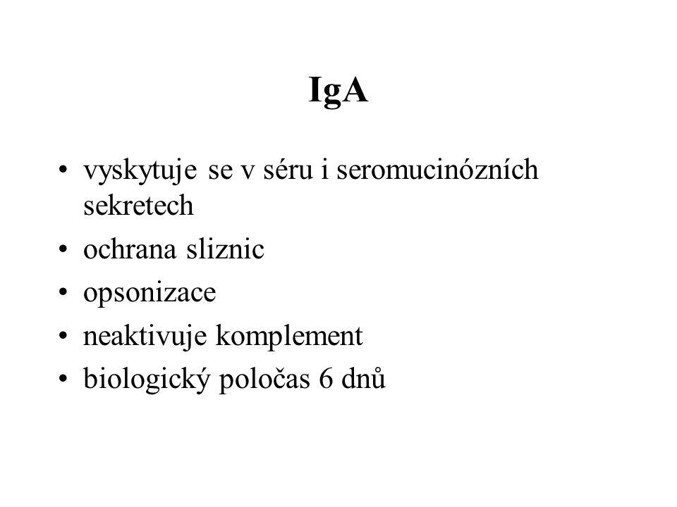 IgA vyskytuje se v séru i seromucinózních sekretech ochrana sliznic opsonizace neaktivuje komplement biologický poločas 6 dnů