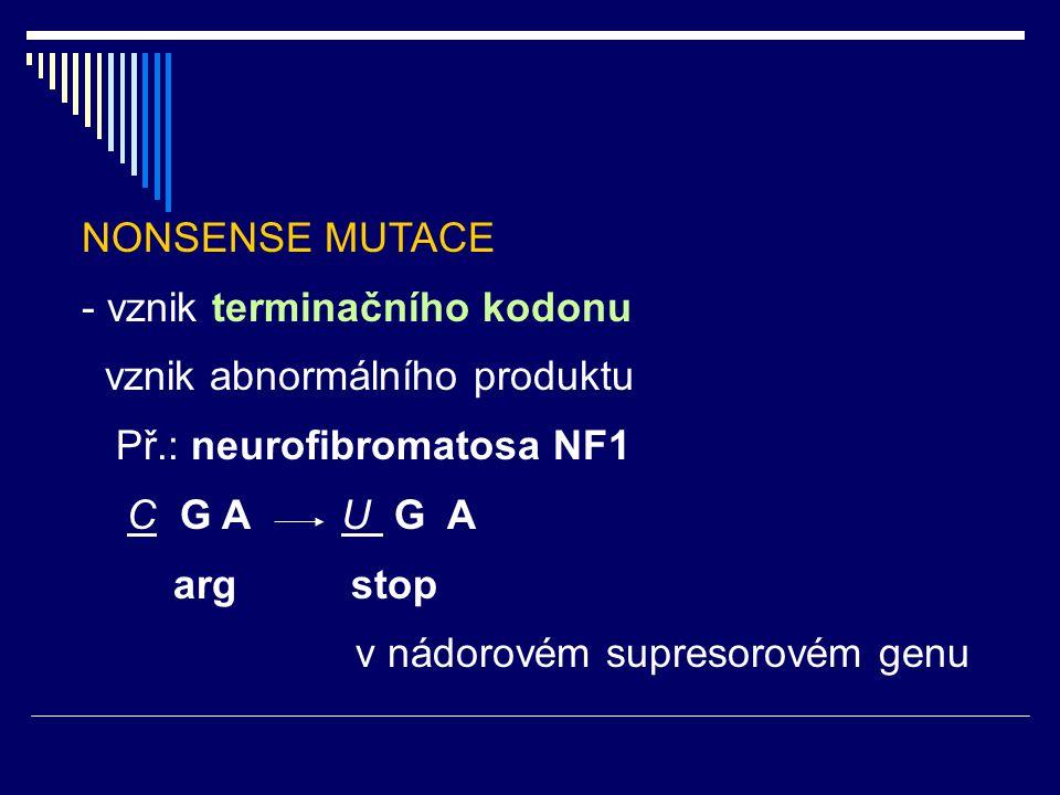 NONSENSE MUTACE - vznik terminačního kodonu vznik abnormálního produktu Př.: neurofibromatosa NF1 C G A U G A arg stop v nádorovém supresorovém genu
