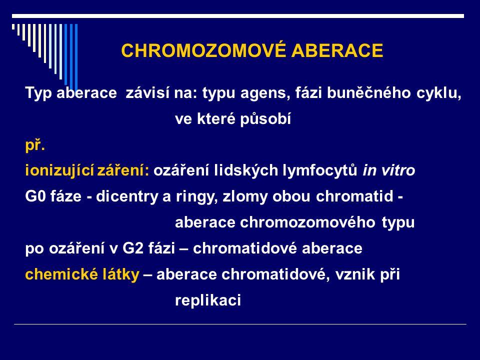 Typ aberace závisí na: typu agens, fázi buněčného cyklu, ve které působí př. ionizující záření: ozáření lidských lymfocytů in vitro G0 fáze - dicentry