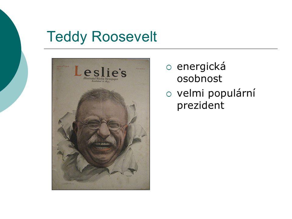 """Theodore Roosevelt  přívrženec imperialistické politiky a zbrojení, zároveň se zasazoval o mírové řešení konfliktů  """"Bylo nám dáno privilegium, abychom hráli vedoucí roli ve století, které právě začalo.  snaha o zlepšní podmínek zaměstnanců, kontrolu trustů, řešení konfliktů mezi odbory a podniky"""