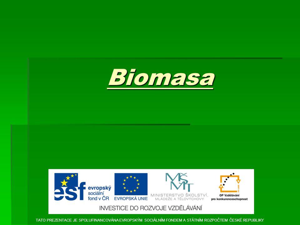 Biomasa TATO PREZENTACE JE SPOLUFINANCOVÁNA EVROPSKÝM SOCIÁLNÍM FONDEM A STÁTNÍM ROZPOČTEM ČESKÉ REPUBLIKY