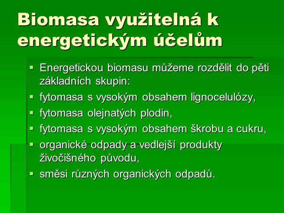 Biomasa využitelná k energetickým účelům  Energetickou biomasu můžeme rozdělit do pěti základních skupin:  fytomasa s vysokým obsahem lignocelulózy,