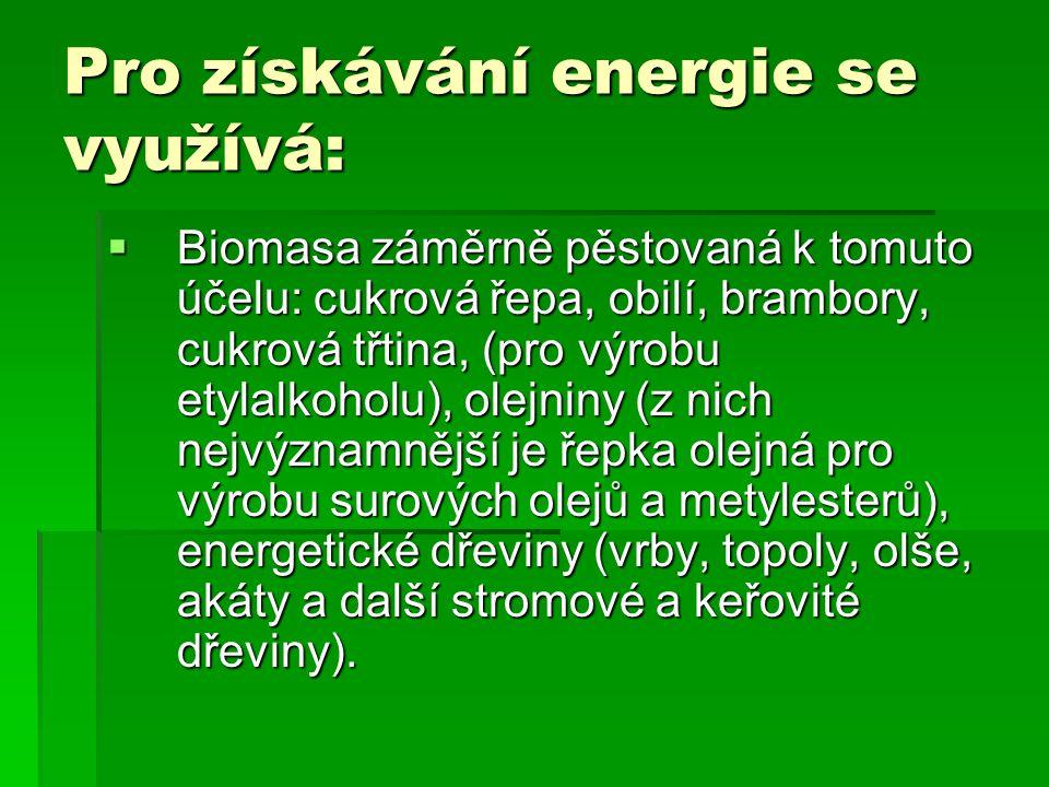 Pro získávání energie se využívá:  Biomasa záměrně pěstovaná k tomuto účelu: cukrová řepa, obilí, brambory, cukrová třtina, (pro výrobu etylalkoholu)