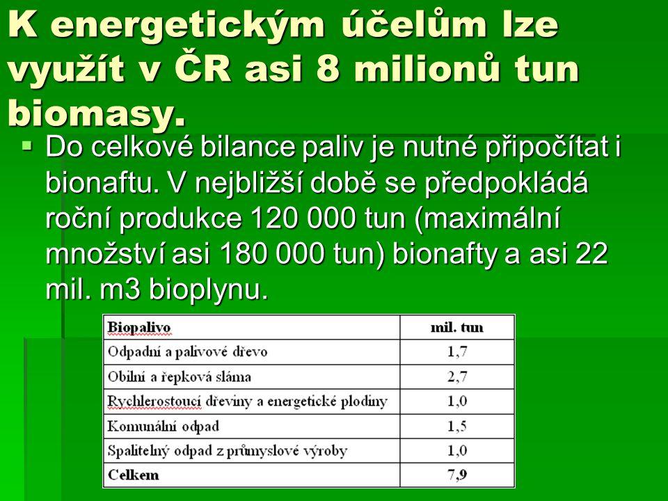 K energetickým účelům lze využít v ČR asi 8 milionů tun biomasy.  Do celkové bilance paliv je nutné připočítat i bionaftu. V nejbližší době se předpo