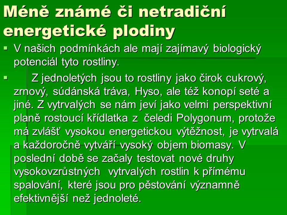 Méně známé či netradiční energetické plodiny  V našich podmínkách ale mají zajímavý biologický potenciál tyto rostliny.  Z jednoletých jsou to rostl