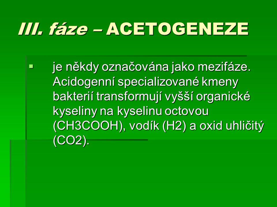 III. fáze – ACETOGENEZE  je někdy označována jako mezifáze. Acidogenní specializované kmeny bakterií transformují vyšší organické kyseliny na kyselin