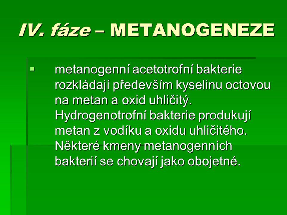 IV. fáze – METANOGENEZE  metanogenní acetotrofní bakterie rozkládají především kyselinu octovou na metan a oxid uhličitý. Hydrogenotrofní bakterie pr