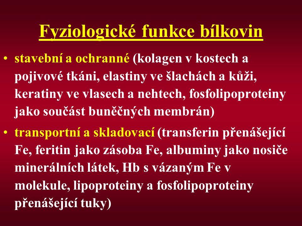 Fyziologické funkce bílkovin stavební a ochranné (kolagen v kostech a pojivové tkáni, elastiny ve šlachách a kůži, keratiny ve vlasech a nehtech, fosfolipoproteiny jako součást buněčných membrán) transportní a skladovací (transferin přenášející Fe, feritin jako zásoba Fe, albuminy jako nosiče minerálních látek, Hb s vázaným Fe v molekule, lipoproteiny a fosfolipoproteiny přenášející tuky)