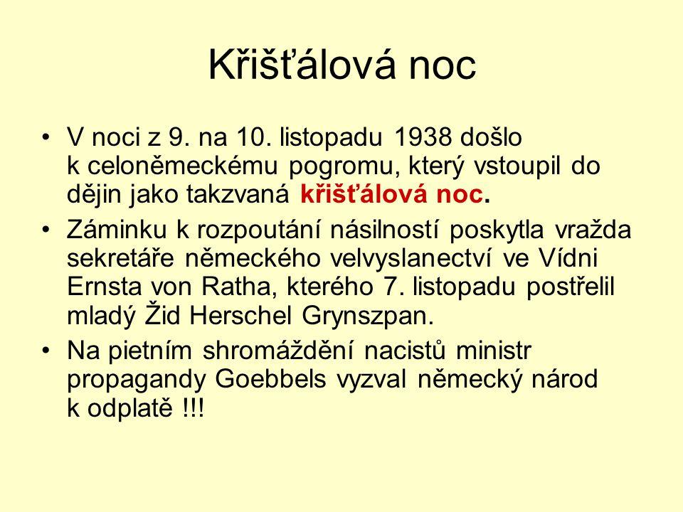 Křišťálová noc V noci z 9. na 10. listopadu 1938 došlo k celoněmeckému pogromu, který vstoupil do dějin jako takzvaná křišťálová noc. Záminku k rozpou