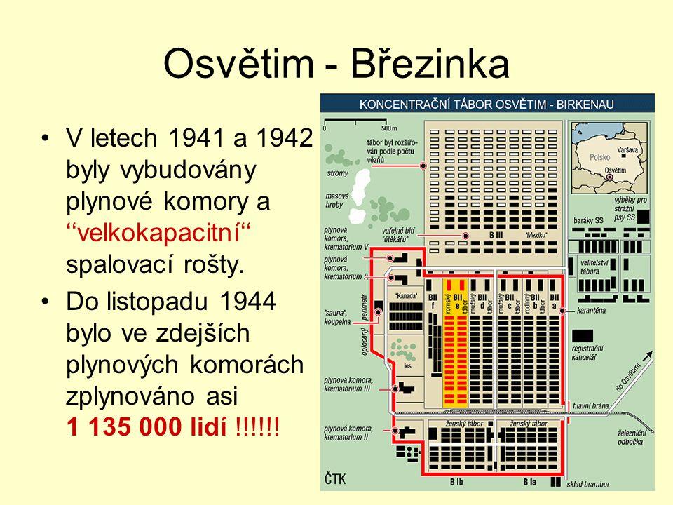 Osvětim - Březinka V letech 1941 a 1942 byly vybudovány plynové komory a ''velkokapacitní'' spalovací rošty. Do listopadu 1944 bylo ve zdejších plynov
