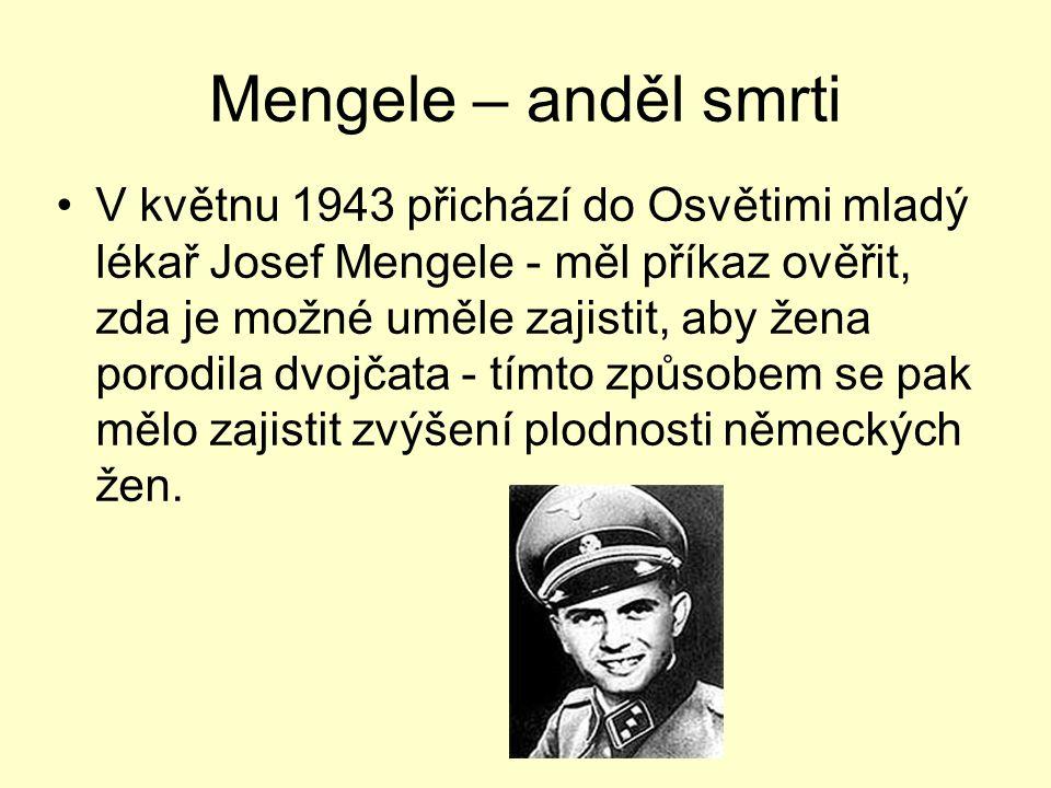 Mengele – anděl smrti V květnu 1943 přichází do Osvětimi mladý lékař Josef Mengele - měl příkaz ověřit, zda je možné uměle zajistit, aby žena porodila