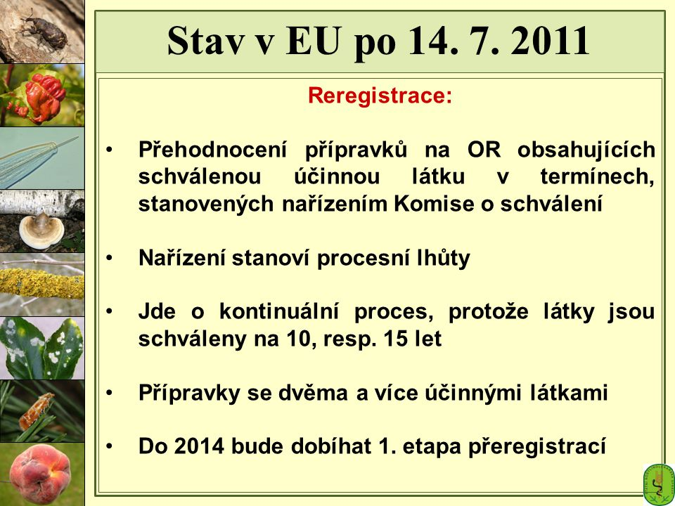 Stav v EU po 14. 7. 2011 Reregistrace: Přehodnocení přípravků na OR obsahujících schválenou účinnou látku v termínech, stanovených nařízením Komise o