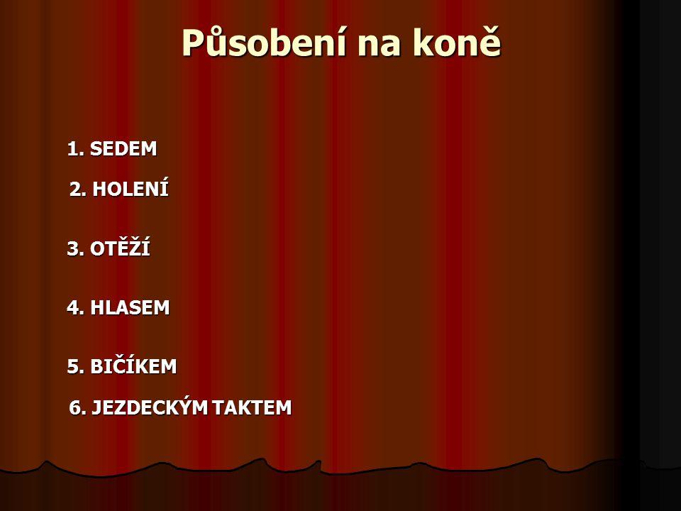 Působení na koně 1.SEDEM 2. HOLENÍ 2. HOLENÍ 3. OTĚŽÍ 4.