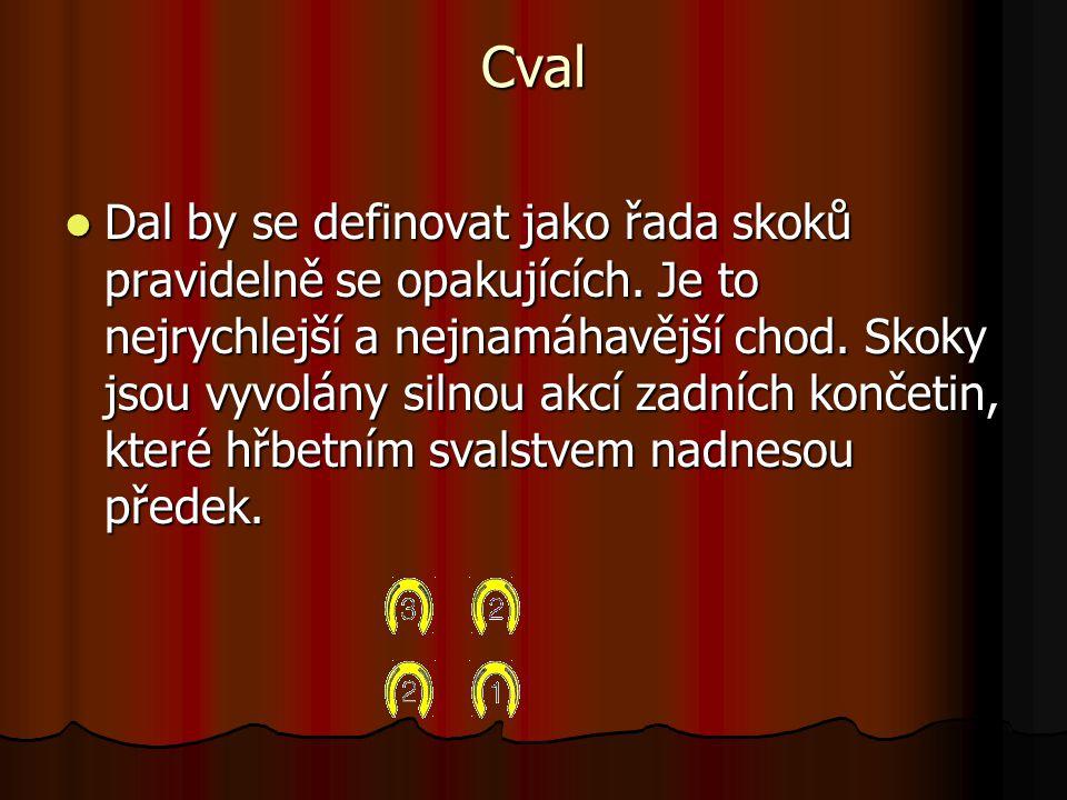 Cval Dal by se definovat jako řada skoků pravidelně se opakujících.