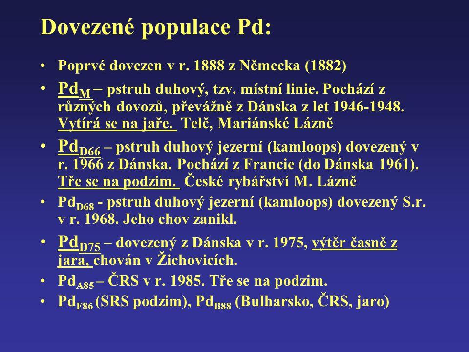Dovezené populace Pd: Poprvé dovezen v r. 1888 z Německa (1882) Pd M – pstruh duhový, tzv. místní linie. Pochází z různých dovozů, převážně z Dánska z
