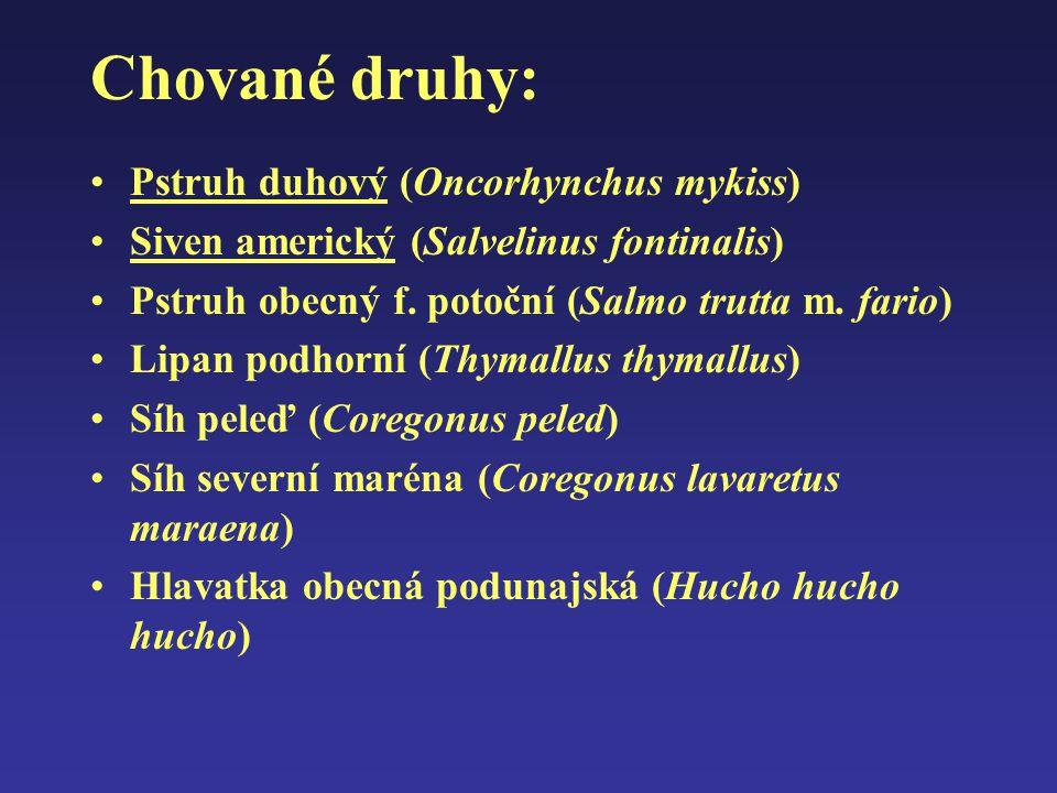 Chované druhy: Pstruh duhový (Oncorhynchus mykiss) Siven americký (Salvelinus fontinalis) Pstruh obecný f. potoční (Salmo trutta m. fario) Lipan podho
