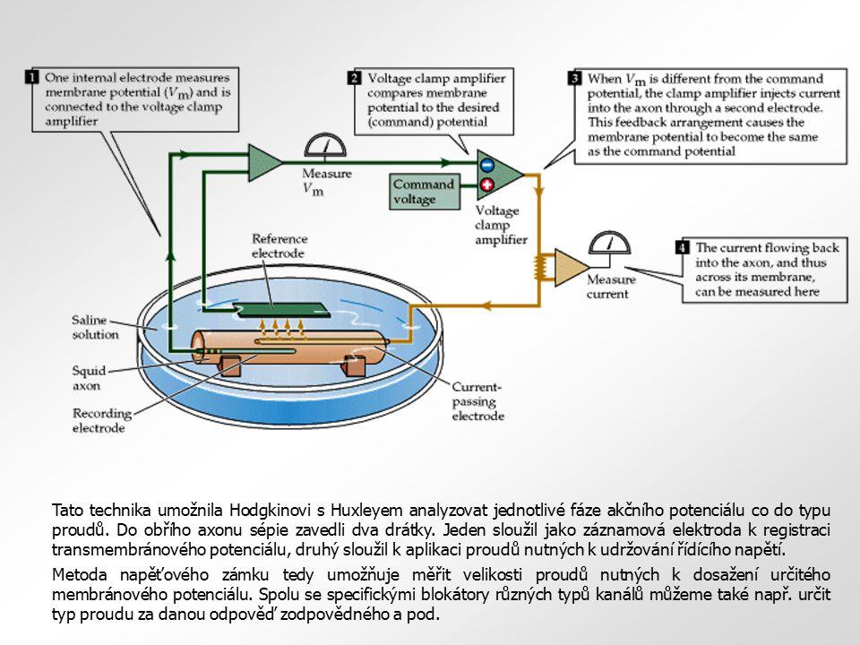 Tato technika umožnila Hodgkinovi s Huxleyem analyzovat jednotlivé fáze akčního potenciálu co do typu proudů. Do obřího axonu sépie zavedli dva drátky