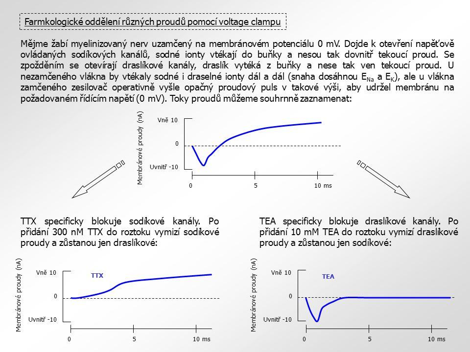 Farmkologické oddělení různých proudů pomocí voltage clampu Mějme žabí myelinizovaný nerv uzamčený na membránovém potenciálu 0 mV. Dojde k otevření na