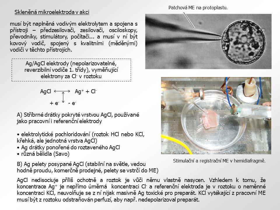 Skleněná mikroelektroda v akci Stimulační a registrační ME v hemidiafragmě. Patchová ME na protoplastu. musí být naplněná vodivým elektrolytem a spoje