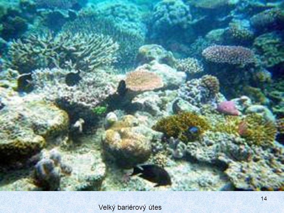 14 Velký bariérový útes