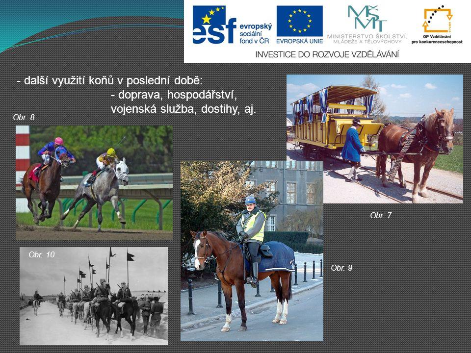 - další využití koňů v poslední době: - doprava, hospodářství, vojenská služba, dostihy, aj. Obr. 7 Obr. 8 Obr. 9 Obr. 10