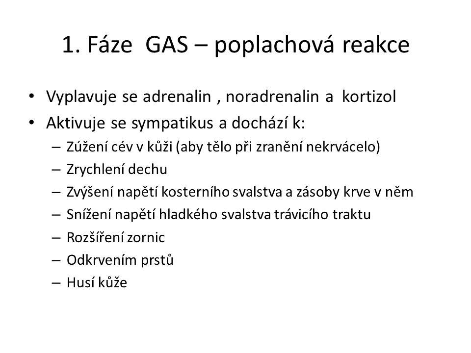 1. Fáze GAS – poplachová reakce Vyplavuje se adrenalin, noradrenalin a kortizol Aktivuje se sympatikus a dochází k: – Zúžení cév v kůži (aby tělo při