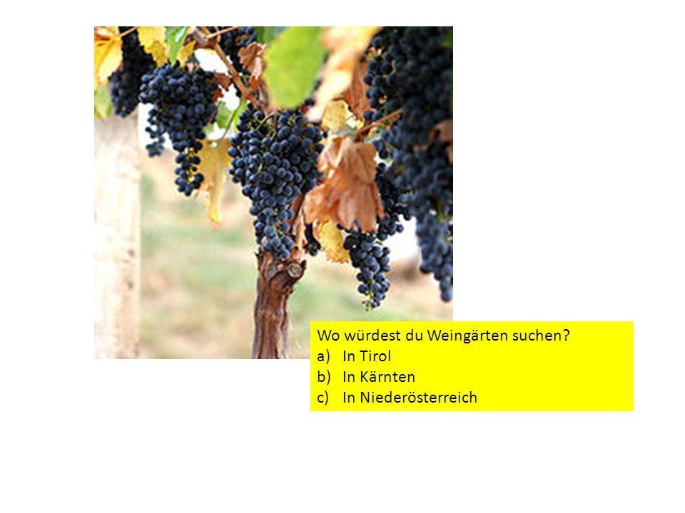 Wo würdest du Weingärten suchen? a)In Tirol b)In Kärnten c)In Niederösterreich