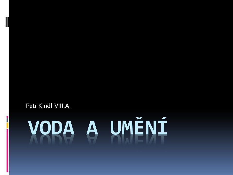 Petr Kindl VIII.A.