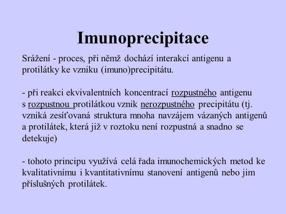 Imunoprecipitace Srážení - proces, při němž dochází interakcí antigenu a protilátky ke vzniku (imuno)precipitátu. - při reakci ekvivalentních koncentr