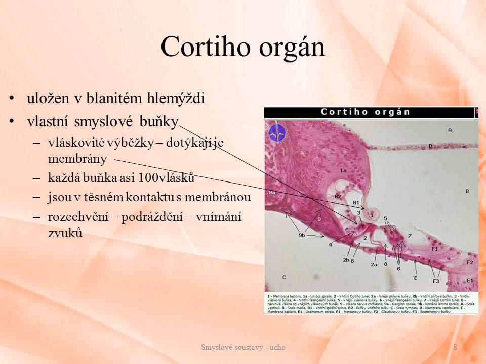 Cortiho orgán uložen v blanitém hlemýždi vlastní smyslové buňky – vláskovité výběžky – dotýkají je membrány – každá buňka asi 100vlásků – jsou v těsném kontaktu s membránou – rozechvění = podráždění = vnímání zvuků 8Smyslové soustavy - ucho