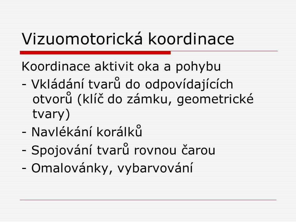 Vizuomotorická koordinace Koordinace aktivit oka a pohybu - Vkládání tvarů do odpovídajících otvorů (klíč do zámku, geometrické tvary) - Navlékání kor
