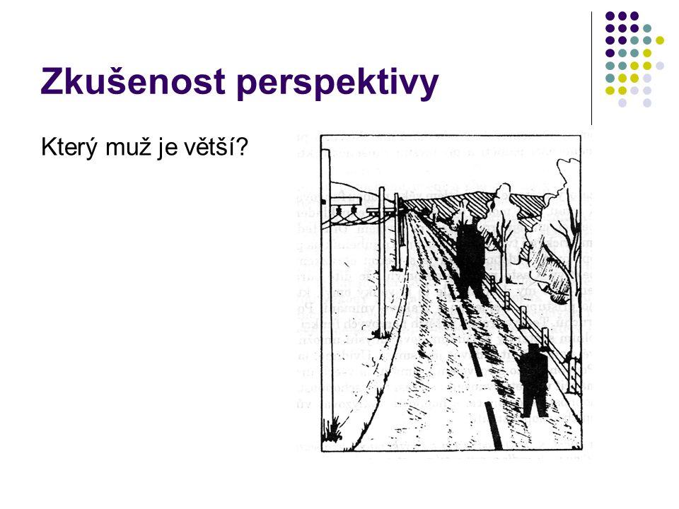 Zkušenost perspektivy Který muž je větší?