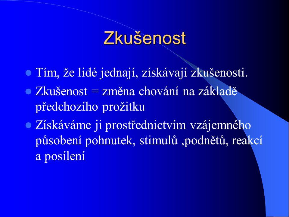 Zkušenostní křivka Petr Bouška IŘT 2007/2008