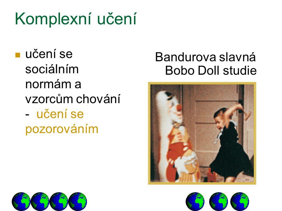 učení se sociálním normám a vzorcům chování - učení se pozorováním Bandurova slavná Bobo Doll studie Komplexní učení