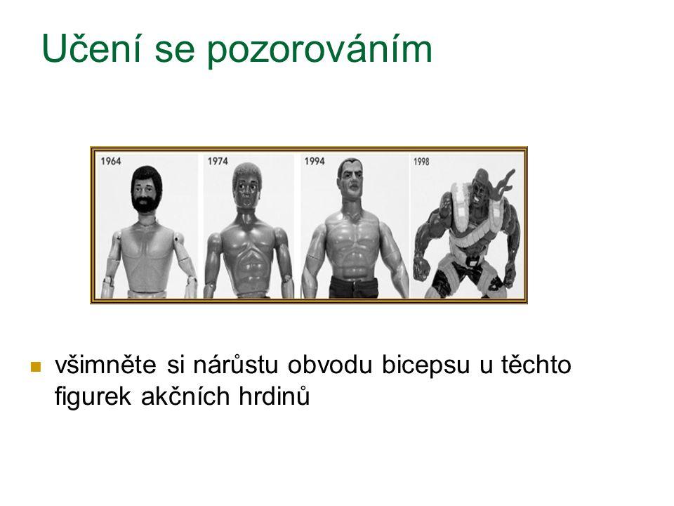 všimněte si nárůstu obvodu bicepsu u těchto figurek akčních hrdinů Učení se pozorováním