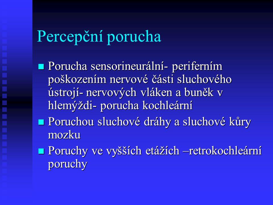 Percepčmí porucha větší ztráta sluchu pro vysoké tony větší ztráta sluchu pro vysoké tony Změna nadprahové hlasitosti, zvuky nad sluchovým prahem jsou neúměrně hlasité Změna nadprahové hlasitosti, zvuky nad sluchovým prahem jsou neúměrně hlasité Špatná korekce sluchadlem, příliš hlasitá korekce Špatná korekce sluchadlem, příliš hlasitá korekce Porucha sluchu na periferii- hlemýžď, sluchový nerv, význe příjem zvuku, kodování hlásek Porucha sluchu na periferii- hlemýžď, sluchový nerv, význe příjem zvuku, kodování hlásek Porucha ve vyšších etážích: příjem zvuku je možný, vázne rozlišování zvuků a chápání významu slov a vět Porucha ve vyšších etážích: příjem zvuku je možný, vázne rozlišování zvuků a chápání významu slov a vět