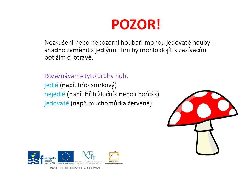 POZOR! Nezkušení nebo nepozorní houbaři mohou jedovaté houby snadno zaměnit s jedlými. Tím by mohlo dojít k zažívacím potížím či otravě. Rozeznáváme t