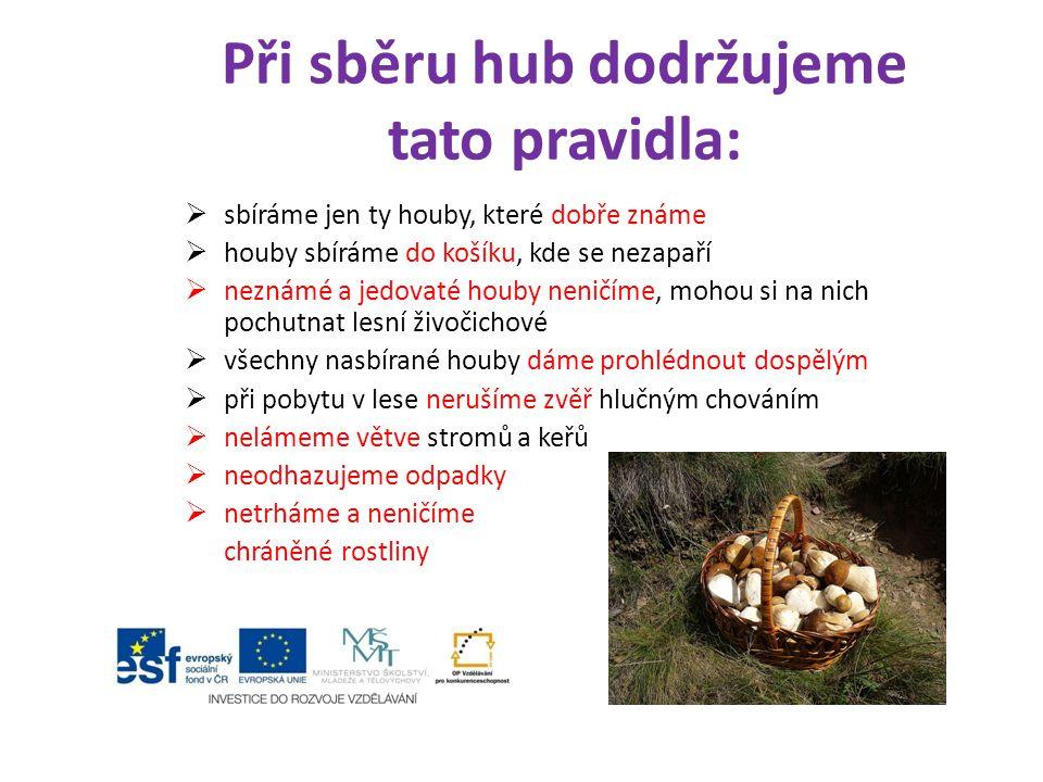 Při sběru hub dodržujeme tato pravidla:  sbíráme jen ty houby, které dobře známe  houby sbíráme do košíku, kde se nezapaří  neznámé a jedovaté houb