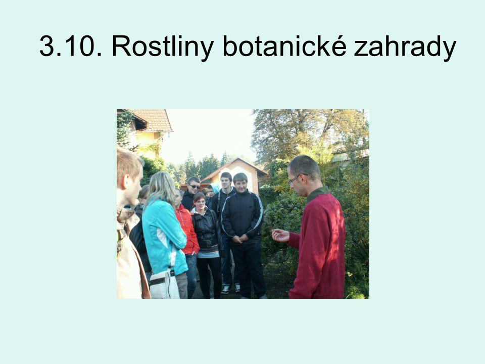 3.10. Rostliny botanické zahrady