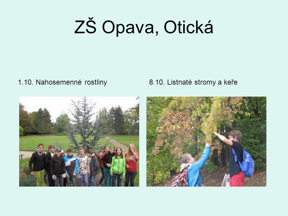 ZŠ Opava, Otická 1.10. Nahosemenné rostliny8.10. Listnaté stromy a keře