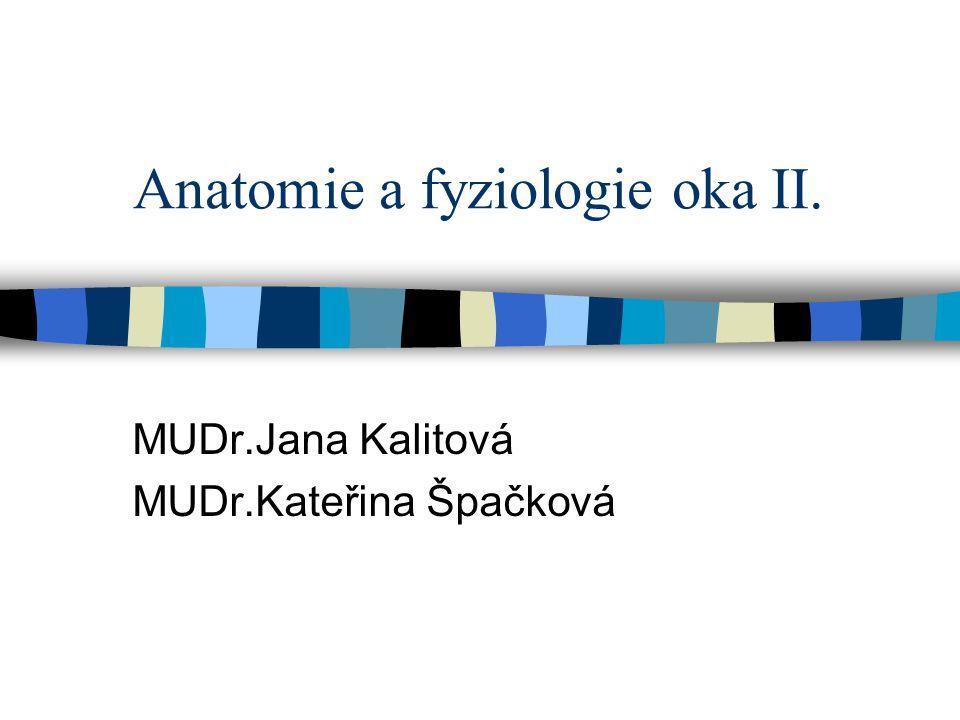 Anatomie a fyziologie oka II. MUDr.Jana Kalitová MUDr.Kateřina Špačková